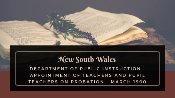 Nsw Department Of Public Instruction Appointment Of Teachers And