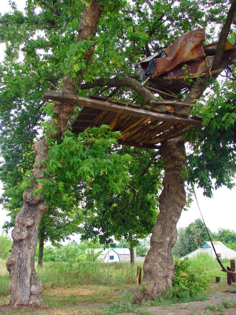 Детский домик на дереве вблизи станции