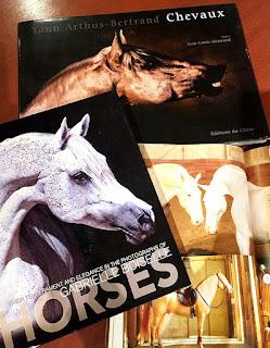 フルオーダージュエリーのために馬にまつわる資料を参考にしました。