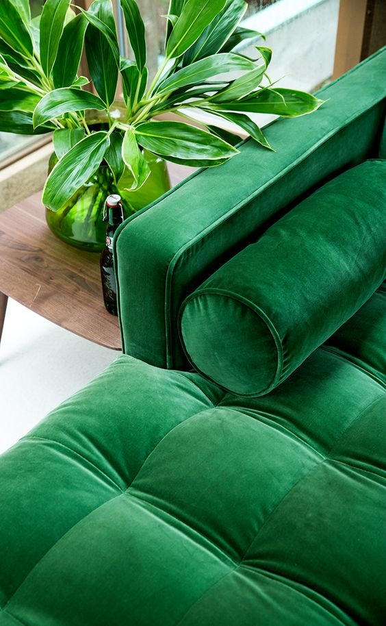 Pantone Color of the Year: Greenery | Kayla Lynn