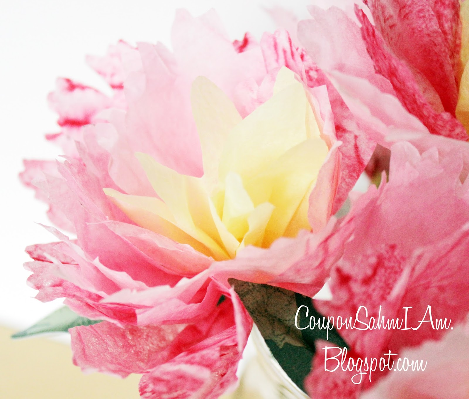 papers and peonies discount code Clear stamps, cardstock, photopolymer stamps, acrylic stamps, paper, craft stamps, stamps, craft supplies, scrapbooking, scrapbooking supplies.