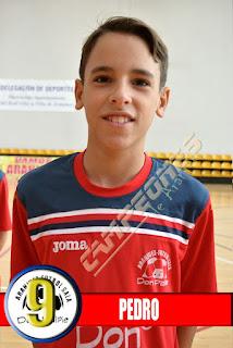 Fútbol-sala Aranjuez - Don Palpie