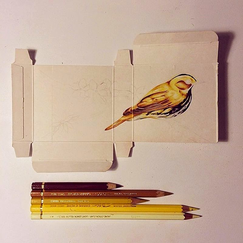 Birds Painting on Unfolded Medicine Boxes
