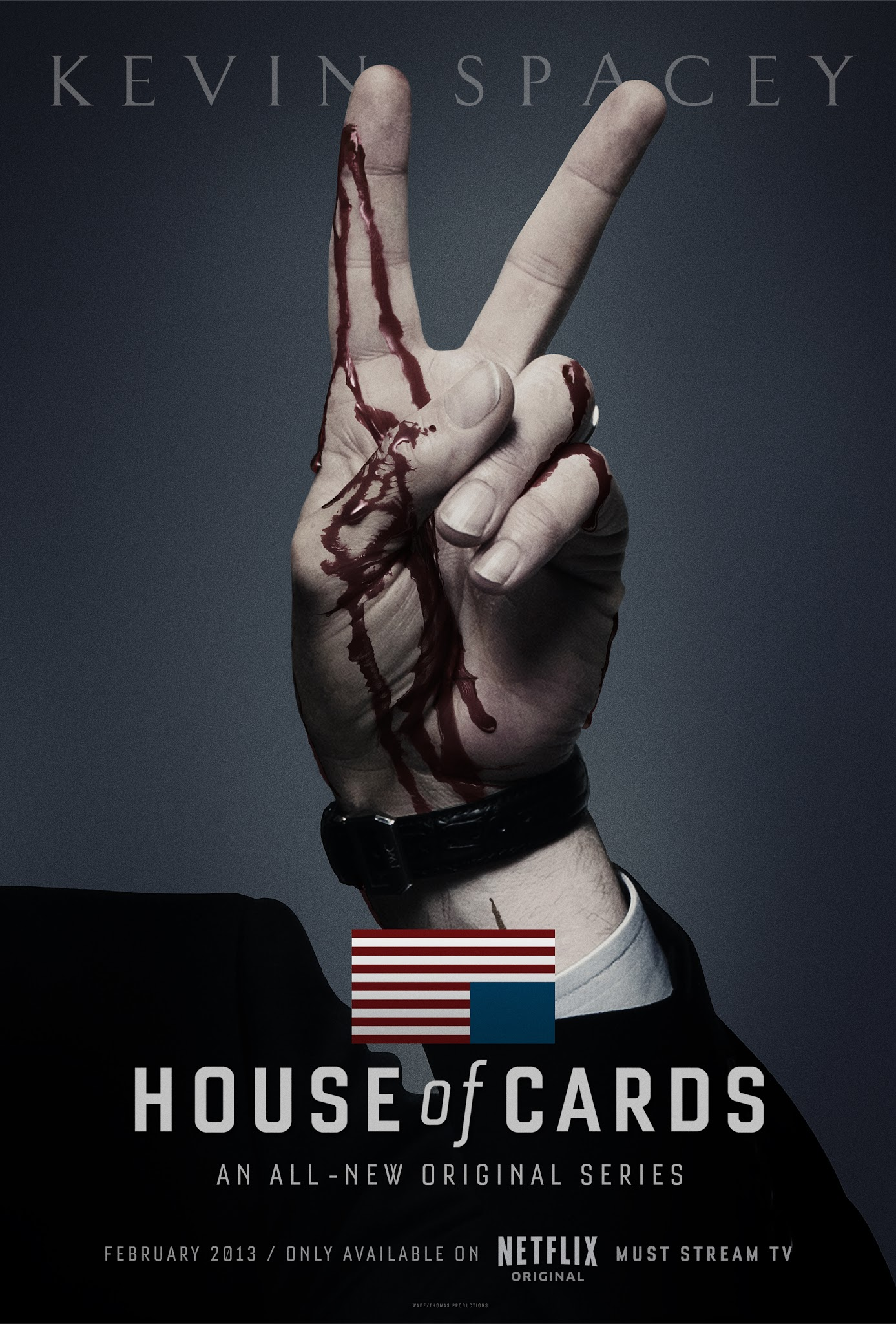 house of cards serial recenzja netflix plakat robin wright