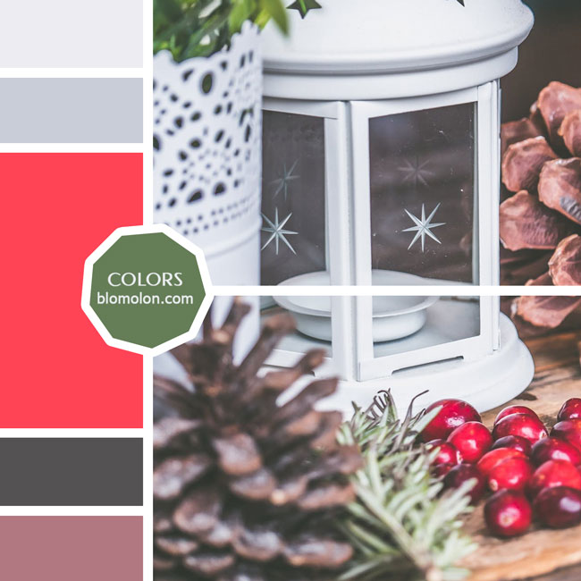 variedad_en_color_moodboard_57