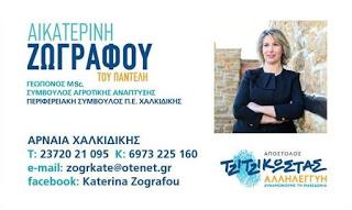 Κατερίνα Ζωγράφου - Υποψήφια Περιφερειακή Σύμβουλος ΠΕ Χαλκιδικής