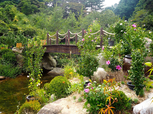 Flowers by a wooden bridge in the Garden of Morning Calm, Gyeonggi-do, South Korea