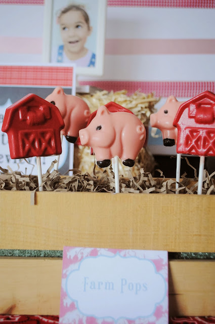 farm pops for a Charlotte's web birthday party or a farm party