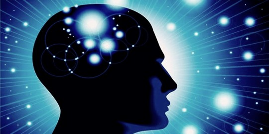 otak tengah manusia