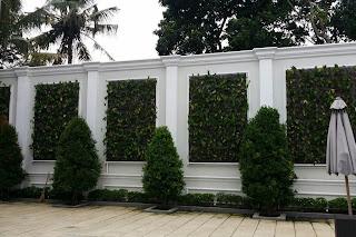 Vertikal garden untuk pagar rumah