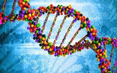 Studi Menemukan: Gen Masih Hidup Setelah Kematian