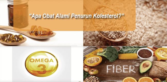 Apa Obat Alami Penurun Kolesterol