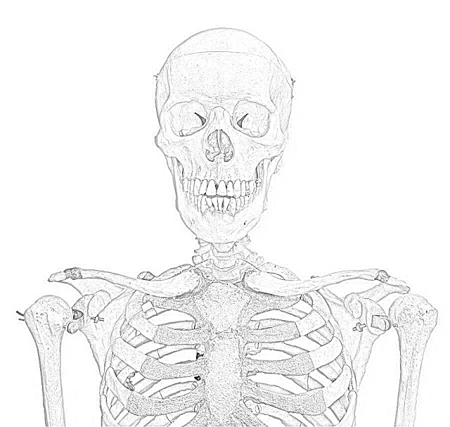 Skeleton coloring.filminspector.com