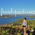 Freshpectives | Launch