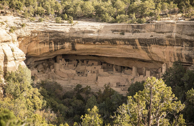 Ancient DNA used to track Mesa Verde exodus in 13th century