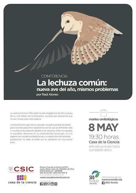Conferencia: La lechuza común: nueva ave del año, mismos problemas. Por Raúl Alonso, 8 de Mayo 2018. Grupo Local SEO-Sevilla.