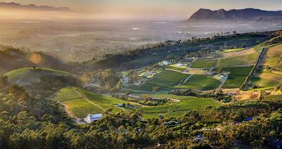 vino sud africa