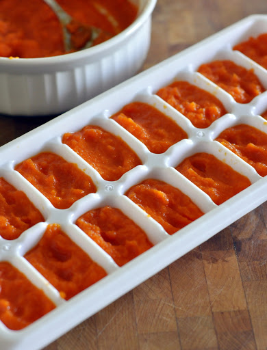 How-To-Freeze-Homemade-Baby-Food-Carrot-Puree-tasteasyougo.com