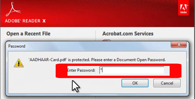 pdf password