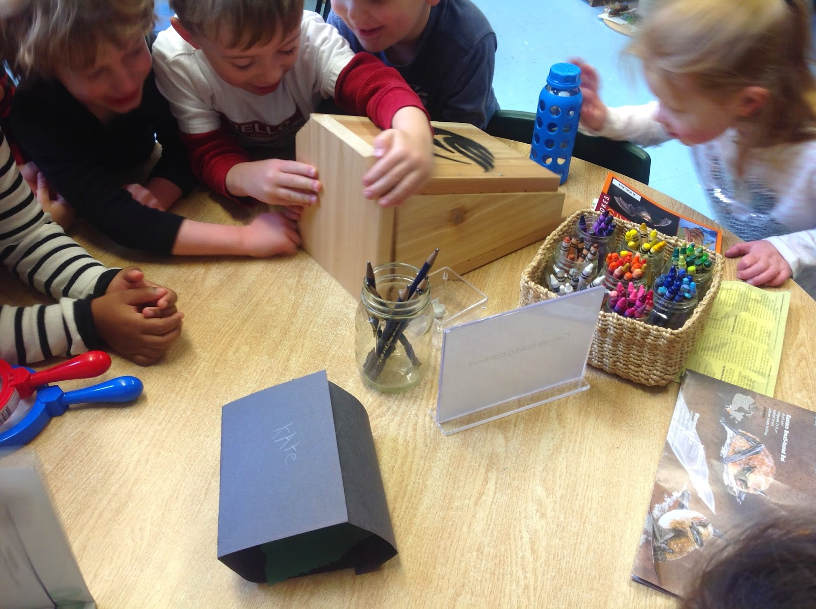 Kinder Garden: Wonders In Kindergarten: Bat Box Building