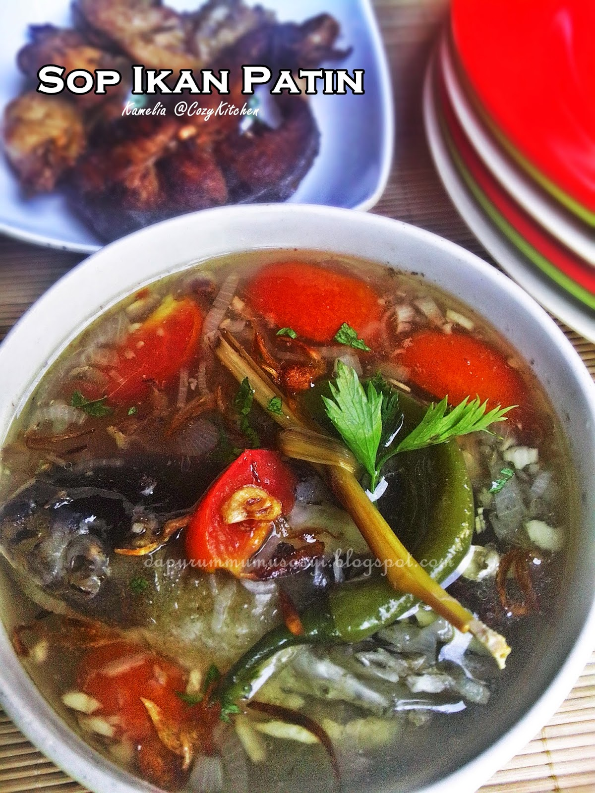 Cozy Kitchen Sop Ikan Patin