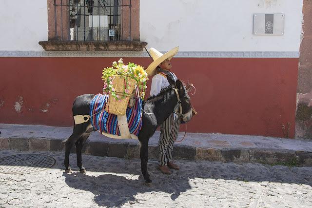 Por las calles de San Miguel de Allende Guanajuato