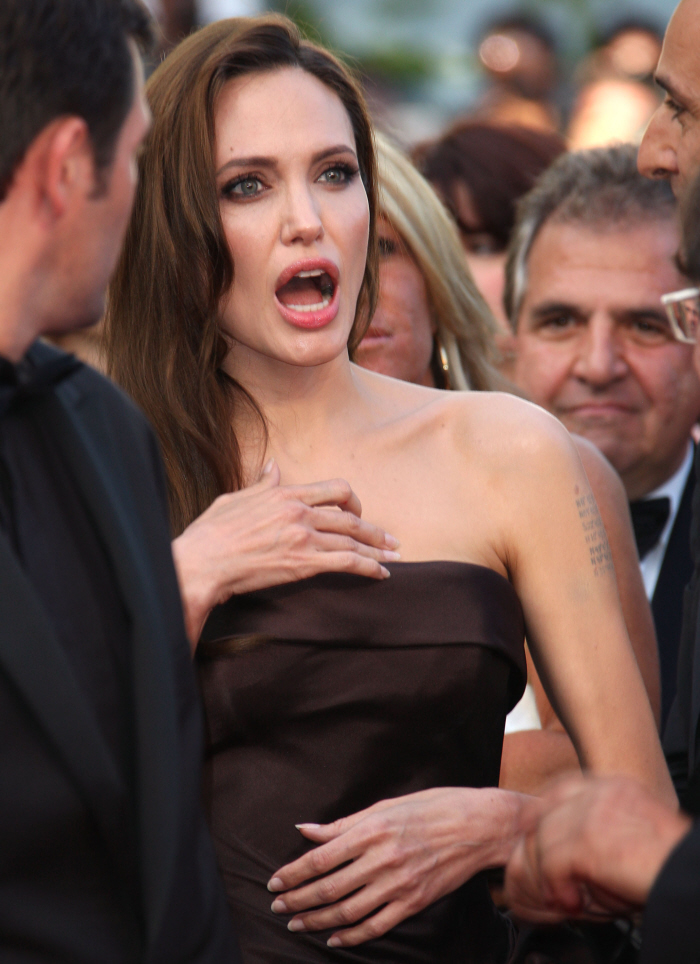 FLYLIPS: BRAD PITT AND ANGELINA JOLIE FIGHTING OVER THE ...