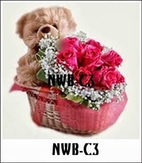 NWB-C3