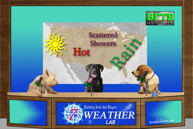 BFTB NETWoof Weather for the week of August 15th 2016