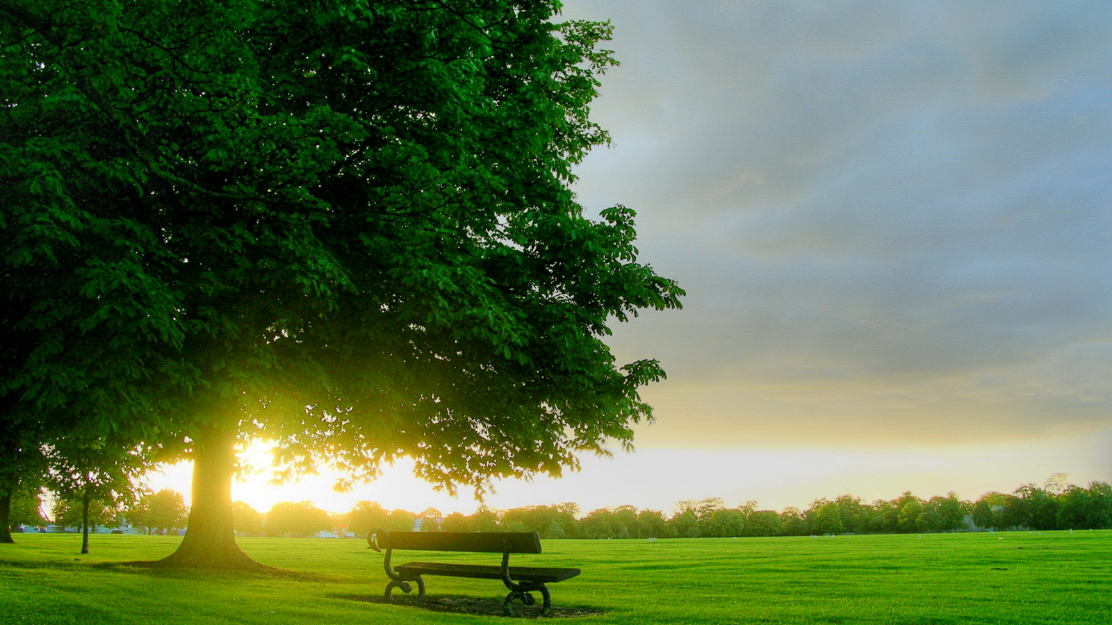 Hd Wallpapers Hd Backgrounds: Central Wallpaper: Empty Benches HD Wallpapers