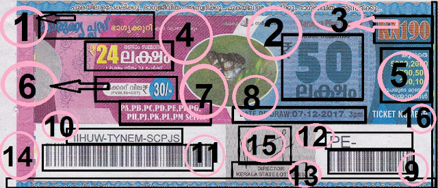 Understanding the ticket of Karunya Plus Lottery front view