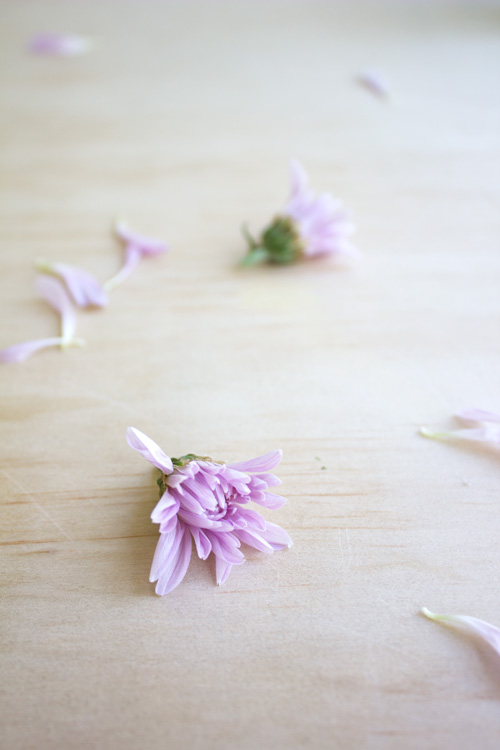 13 Ways to Make Your Home Smell Amazing by Eliza Ellis