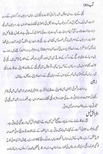 Lychee or Litchi Fruit Forming Booklet in Urdu