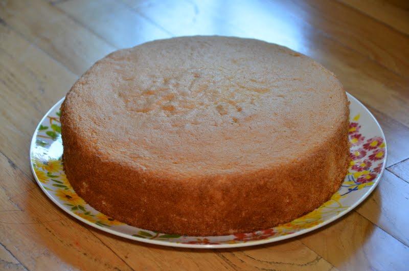 Large Sponge Cake Recipe In Cups