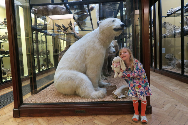 lily and the polar bear