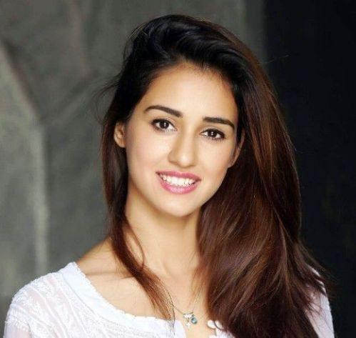 Disha Patani's Top 10 Highest Grossing Films mt Wiki, Disha Patani Top 10 Highest Grossing Films Of All Time wikipedia, Biggest hits of his career koimoi
