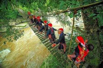 Cầu treo bắc qua suối