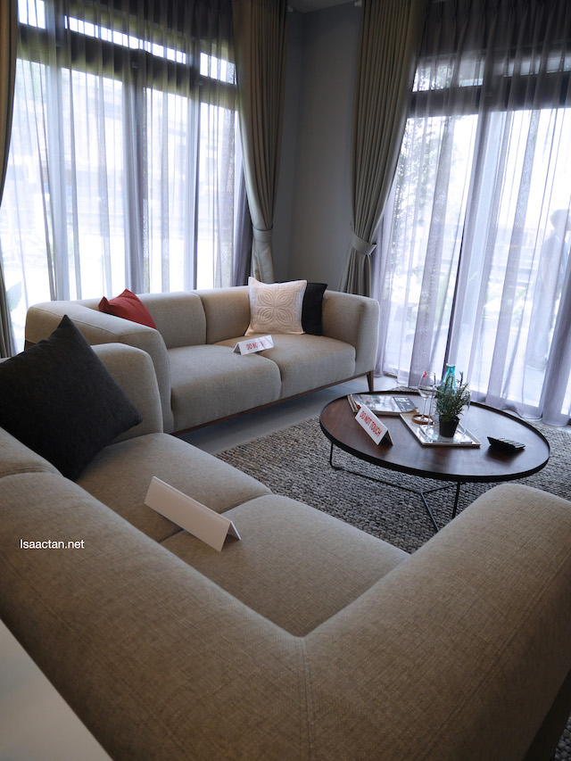 Comfy sofas in the living room