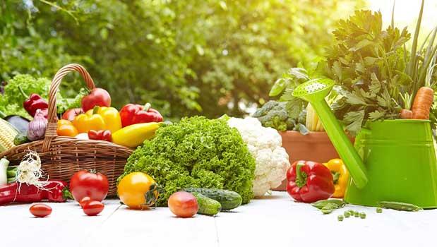 Agar Sayuran Tidak Kehilangan Kesegarannya