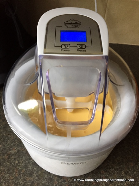 Starting out with the Savisto ice cream maker