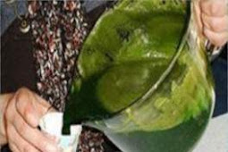 Oncologists Accidental Discovery – The Juice That Kills Cancer