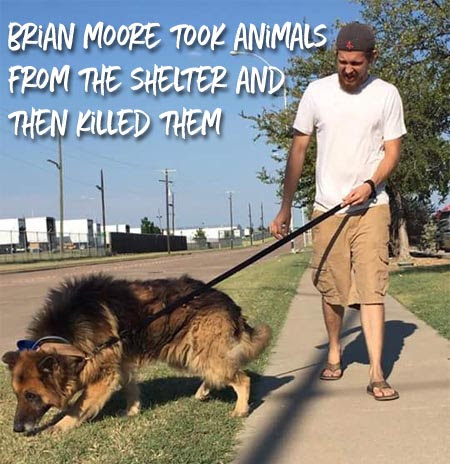 Four Legged Friends And Enemies Arkansas Whitney Smither Said She Was Working For A Rescue