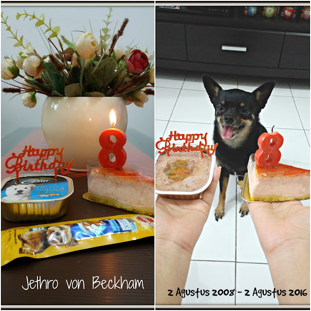 Jethro Merayakan Ulang Tahunnya Yang Ke 6 Tanggal 2 Agustus 2016