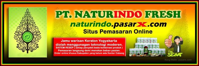 NATURINDO FRESH HERBAL - Produk Obat Alami Harga Rakyat 1001 Khasiat Manfaat Asli Jogja/Yogyakarta