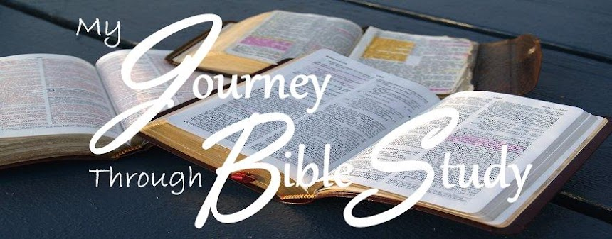 My Journey Through Bible Study