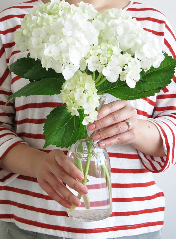 Tips on how to make cut hydrangeas last forever. (The ones in this vase are already 2+ weeks old!)