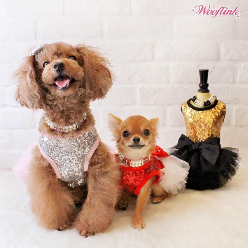 WOOFLINK - Hip designer dog clothes: LET'S PARTY