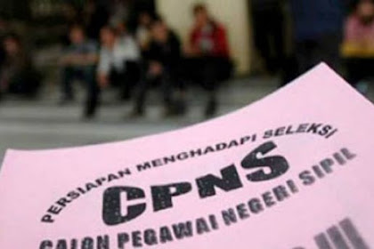 Prioritas Formasi Penerimaan CPNS 2018
