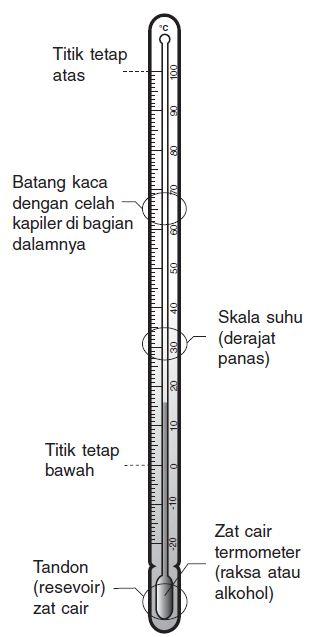 Pengertian, Fungsi serta Prinsip dan Cara Kerja Termometer