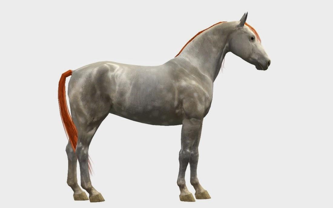 Sims Horses Mustang Kiger Mustang Amp Spanish Mustang